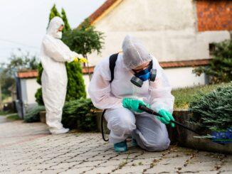 Fumigación y Control de Plagas Urbanas
