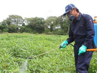 tecnicas de control fitosanitario