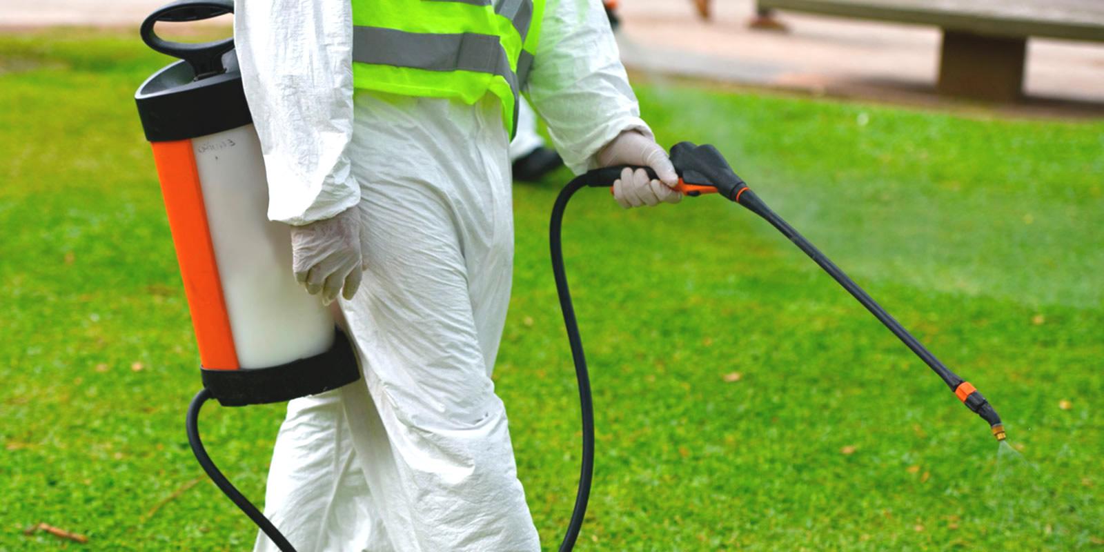 Diferencias entre control de plagas y fumigación