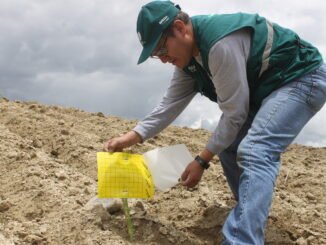 métodos de control biológico de plagas